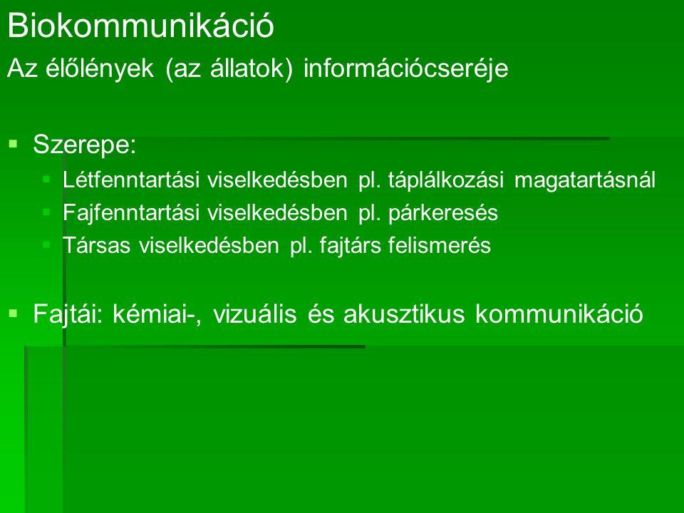 Biokommunikáció Az élőlények (az állatok) információcseréje   Szerepe:   Létfenntartási viselkedésben pl.