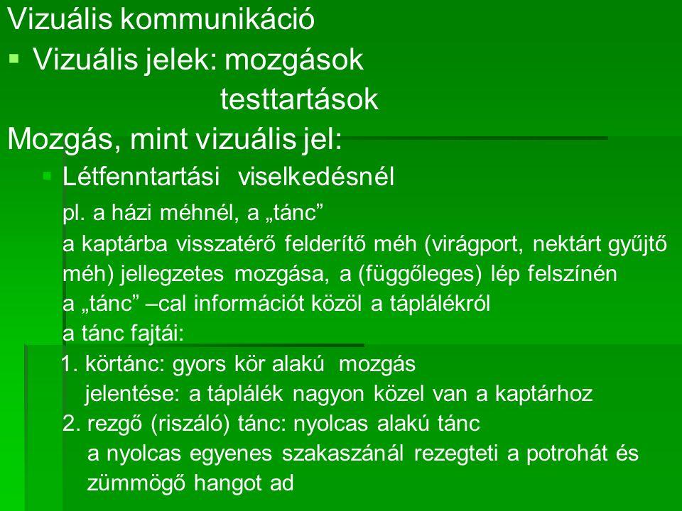 Vizuális kommunikáció   Vizuális jelek: mozgások testtartások Mozgás, mint vizuális jel:   Létfenntartási viselkedésnél pl.