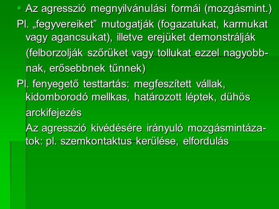  Az agresszió megnyilvánulási formái (mozgásmint.) Pl.
