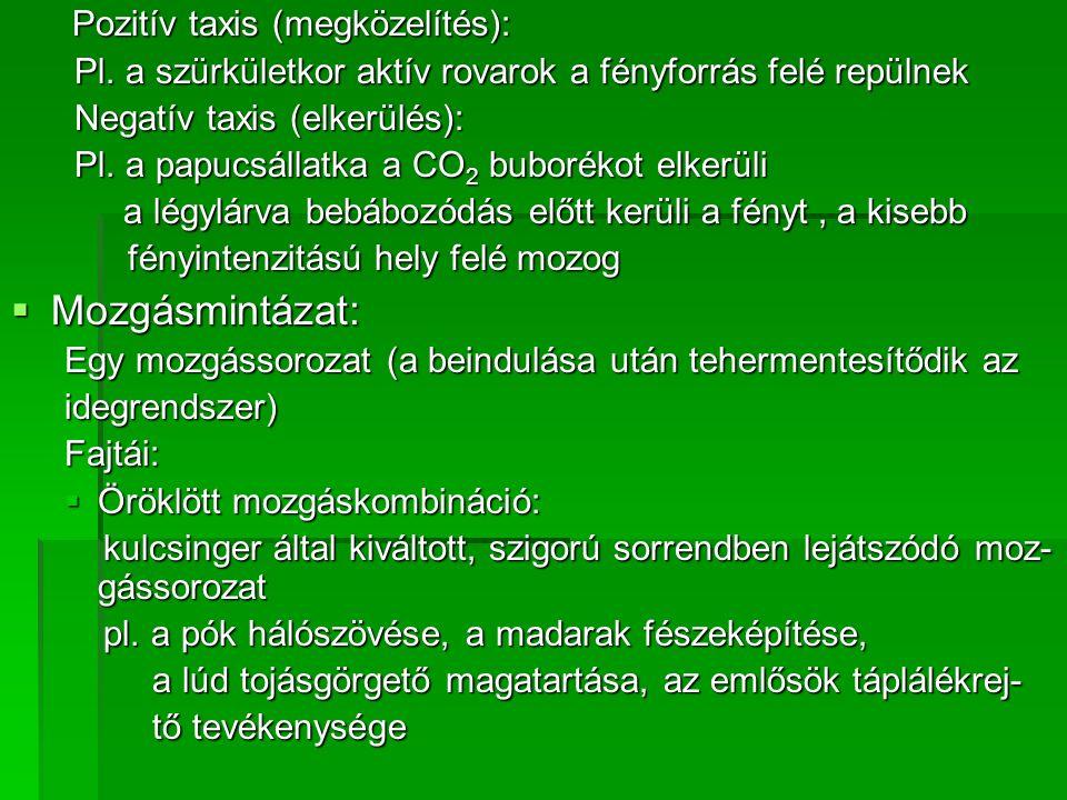 Pozitív taxis (megközelítés): Pozitív taxis (megközelítés): Pl.