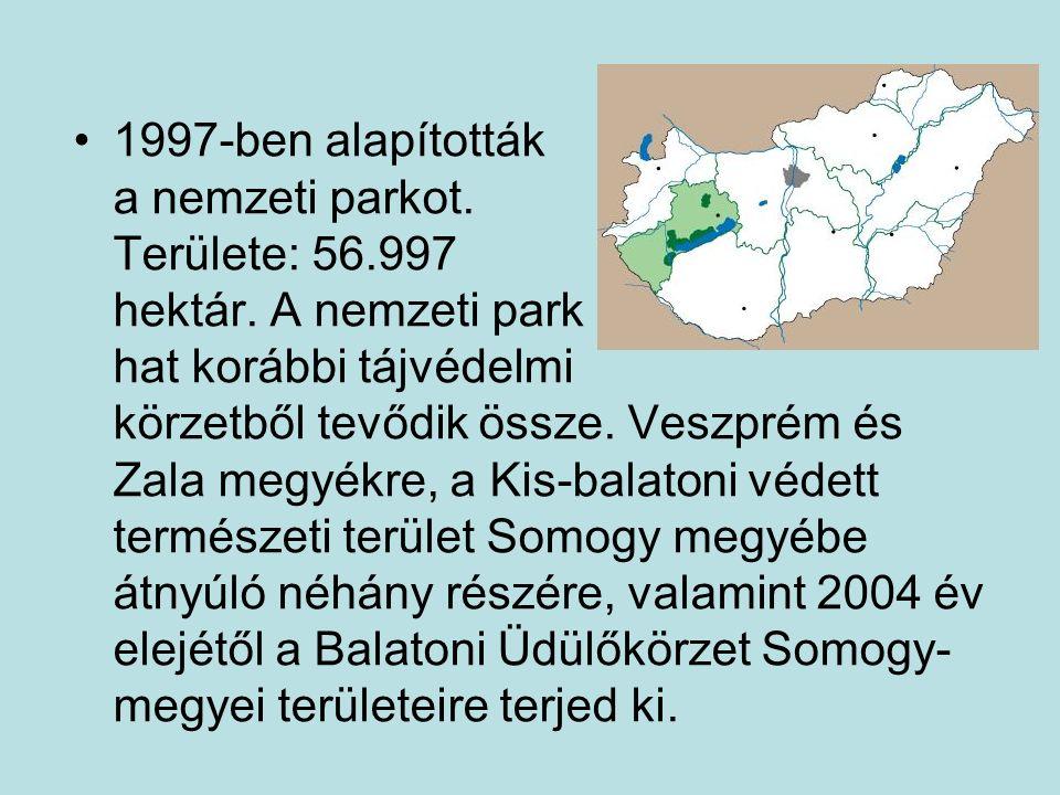 1997-ben alapították a nemzeti parkot. Területe: 56.997 hektár. A nemzeti park hat korábbi tájvédelmi körzetből tevődik össze. Veszprém és Zala megyék