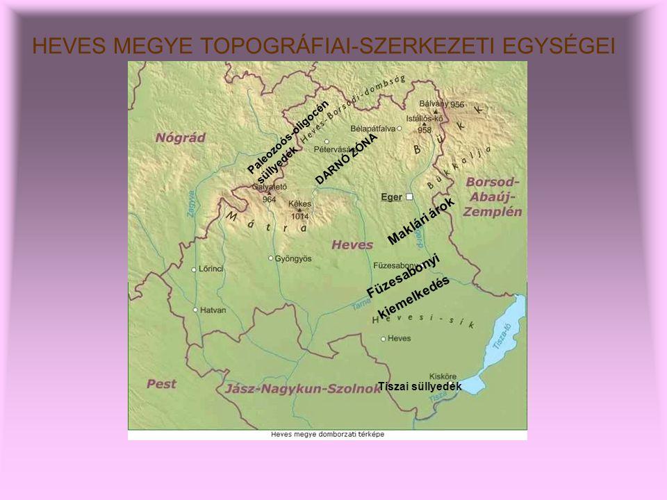 HEVES MEGYE TOPOGRÁFIAI-SZERKEZETI EGYSÉGEI DARNÓ ZÓNA Maklári árok Füzesabonyi kiemelkedés Tiszai süllyedék Paleozoós-oligocén süllyedék