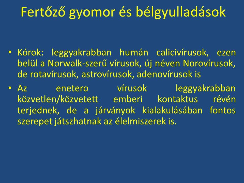 Fertőző gyomor és bélgyulladások Kórok: leggyakrabban humán calicivírusok, ezen belül a Norwalk-szerű vírusok, új néven Norovírusok, de rotavírusok, a