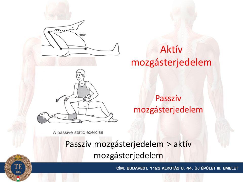 MOZGÁSTERJEDELEM (ROM) A mozgásterjedelem azt a legnagyobb ízületi szögelfordulást jelenti egy ízületi tengely körül, amely anatómiailag még lehetséges A mozgásterjedelem azt a legnagyobb ízületi szögelfordulást jelenti egy ízületi tengely körül, amely anatómiailag még lehetséges