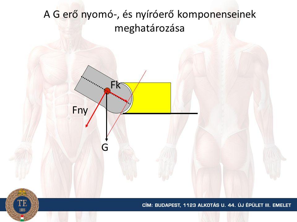 G Fny Fh A G súlyerő húzó-, és nyíróerő komponenseinek meghatározása