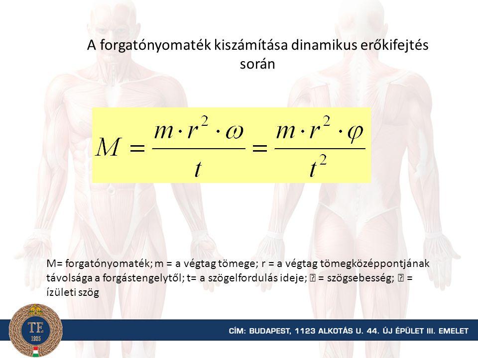 Transzverzális sík G Gny GkGk  Fny = Finy + (-Gny)  Fk = Fik + Gk FiFi Finy Fik Az ízületre ható összes nyomó és húzóerő G= az alsó végtag súlyereje; Gk = a súlyerő nyomóerő (kompressziós erő); Gny = a súlyerő nyíróerő komponense; Fi = izoemrő; Fik = az izomerő nyomóerő komponense; Finy = az izomerő nyíróerő komponense.