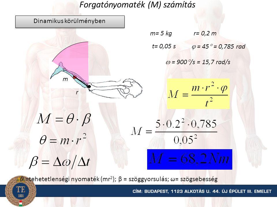 Forgatónyomaték (M) számítás m mg k Erő(teher) kar= a forgáspontból az erő hatásvonalára bocsátott merőleges egyenes hossza Statikus helyzetben m= 5 kg r= 0,2 m k = 0,14 m szög = 45  r