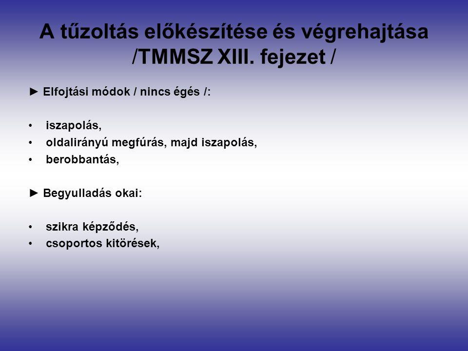 A tűzoltás előkészítése és végrehajtása /TMMSZ XIII.
