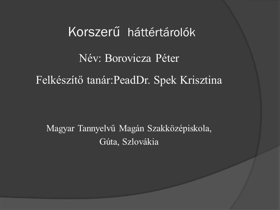 Korszerű háttértárolók Név: Borovicza Péter Felkészítő tanár:PeadDr.