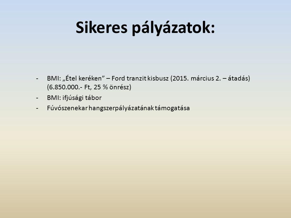 Költségvetés 2015: 7.544.000.- Ft (eredeti előirányzat) -4.000.000.- Ft Pilisvörösvár Város Önkormányzata támogatása -3.418.000.- Ft feladatalapú támogatás -379.600.- Ft működési támogatás Ebből: egyesületek működési költsége, továbbképzések, partnerkapcsolati rendezvények, saját rendezvények, egyéb támogatások