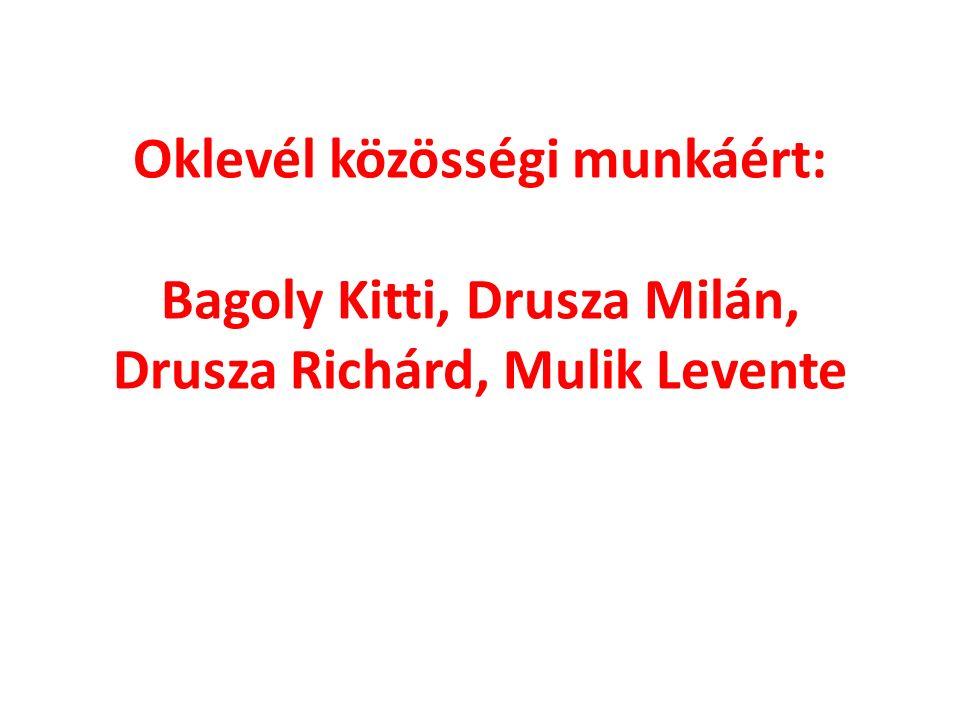 Oklevél közösségi munkáért: Bagoly Kitti, Drusza Milán, Drusza Richárd, Mulik Levente