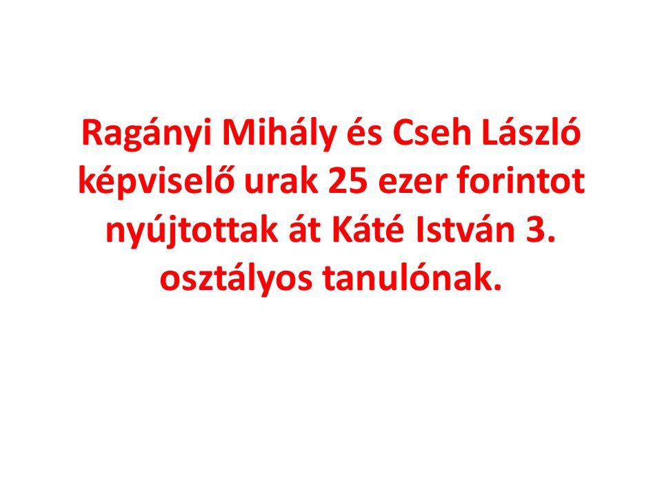 Ragányi Mihály és Cseh László képviselő urak 25 ezer forintot nyújtottak át Káté István 3.
