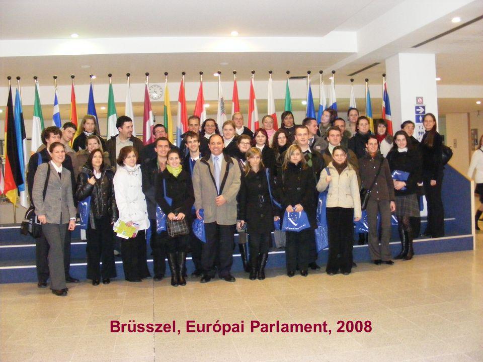 Brüsszel, Európai Parlament, 2008