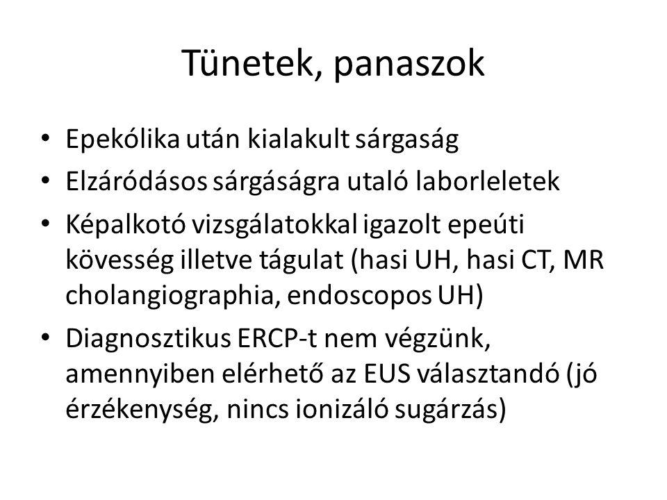 Tünetek, panaszok Epekólika után kialakult sárgaság Elzáródásos sárgáságra utaló laborleletek Képalkotó vizsgálatokkal igazolt epeúti kövesség illetve tágulat (hasi UH, hasi CT, MR cholangiographia, endoscopos UH) Diagnosztikus ERCP-t nem végzünk, amennyiben elérhető az EUS választandó (jó érzékenység, nincs ionizáló sugárzás)