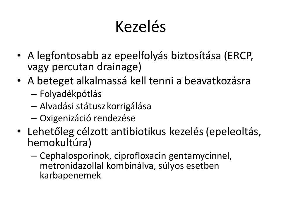 A legfontosabb az epeelfolyás biztosítása (ERCP, vagy percutan drainage) A beteget alkalmassá kell tenni a beavatkozásra – Folyadékpótlás – Alvadási státusz korrigálása – Oxigenizáció rendezése Lehetőleg célzott antibiotikus kezelés (epeleoltás, hemokultúra) – Cephalosporinok, ciprofloxacin gentamycinnel, metronidazollal kombinálva, súlyos esetben karbapenemek