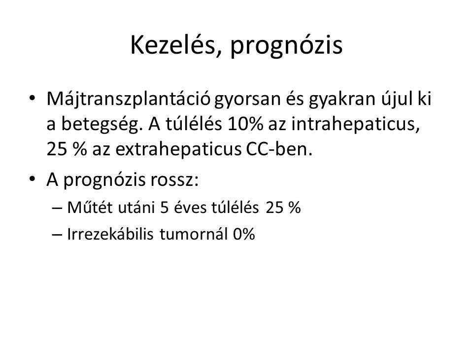 Kezelés, prognózis Májtranszplantáció gyorsan és gyakran újul ki a betegség.