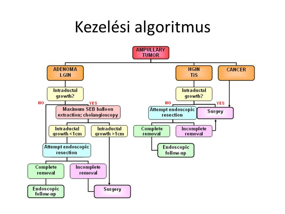 Kezelési algoritmus