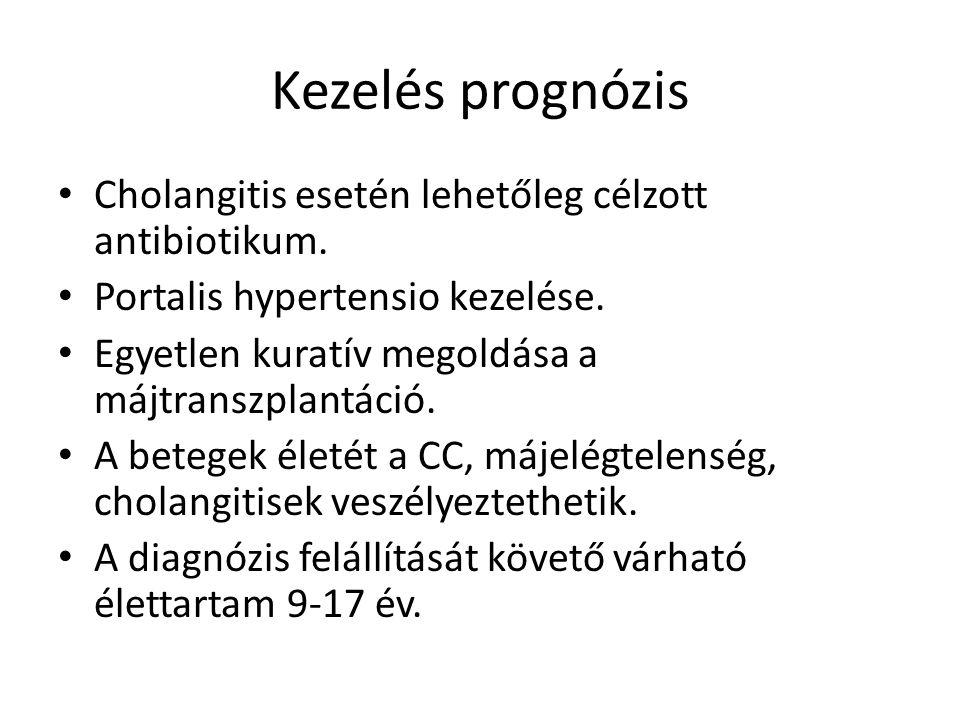 Kezelés prognózis Cholangitis esetén lehetőleg célzott antibiotikum.