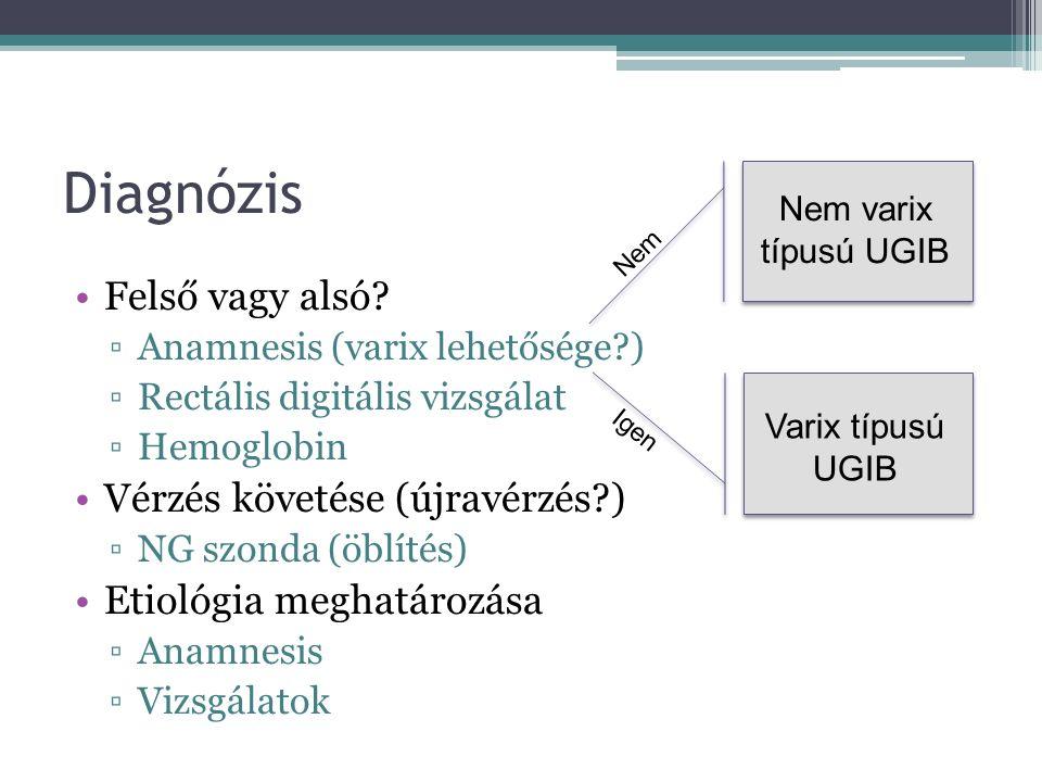 Diagnosztikus vizsgálatok OGB (UGIB) Colonoscopia (LGIB) Sigmoidoscopia – nálunk ritkán használt Enteroscopia (Push, egyes-, kettős ballon endoscopia) Kapszulás endoscopia – jó diagnosztikus érték, terápiás lehetőségek hiánya Szcintigráfia (vvt tagged)– 0,1 ml/per (45% szenz., lokalizálás 78 %) Angiográfia – 0,5-1,0 ml/perc, eszközigény (47% szenz., 100% spec., hemostasis eredményessége: 44-91%) Bárium vizsgálatok – jó térfoglalás/nagyobb laesio kimutatására CT-angio – gyenge szenz.