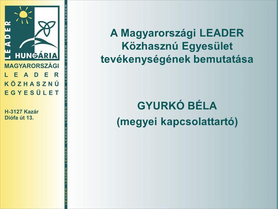 A Magyarországi LEADER Közhasznú Egyesület tevékenységének bemutatása GYURKÓ BÉLA (megyei kapcsolattartó)