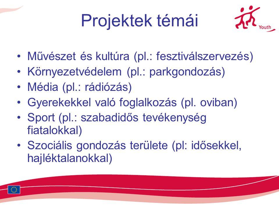 Projektek témái Művészet és kultúra (pl.: fesztiválszervezés) Környezetvédelem (pl.: parkgondozás) Média (pl.: rádiózás) Gyerekekkel való foglalkozás (pl.