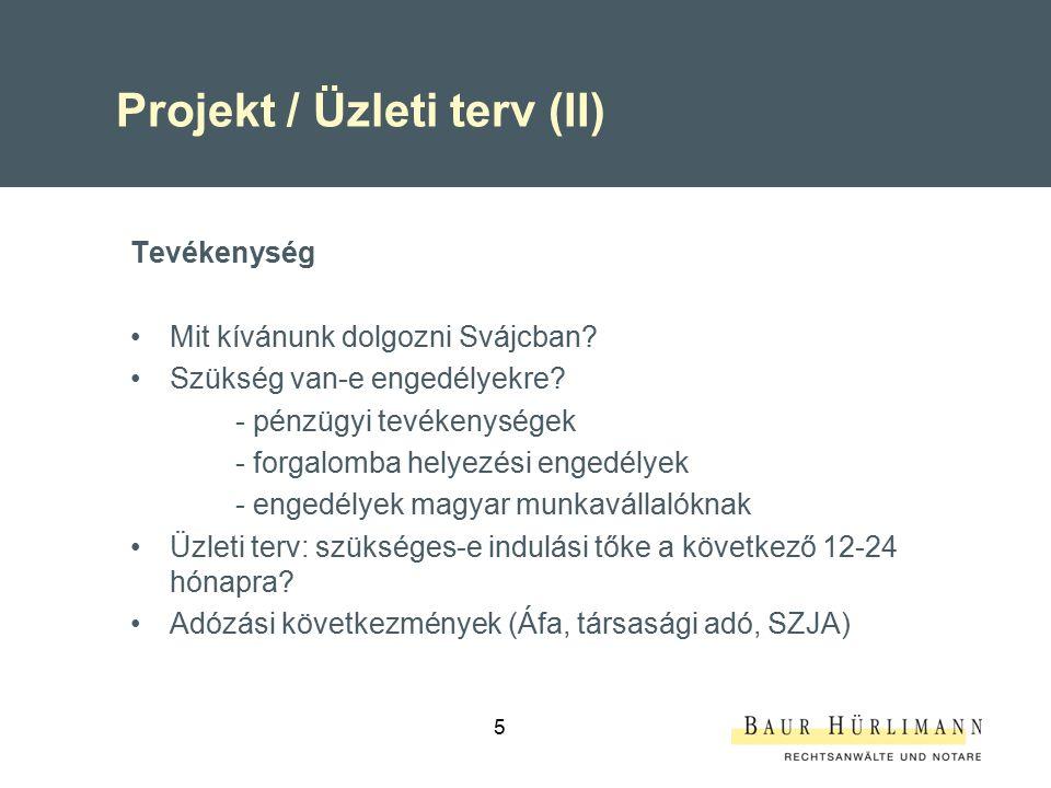 5 Projekt / Üzleti terv (II) Tevékenység Mit kívánunk dolgozni Svájcban? Szükség van-e engedélyekre? - pénzügyi tevékenységek - forgalomba helyezési e
