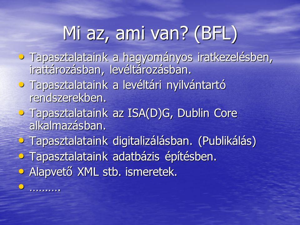 Mi az, ami hiányzik.(BFL) Tapasztalatok az e-iratkezelésben (DMS, CMS), e-levéltárazásban.