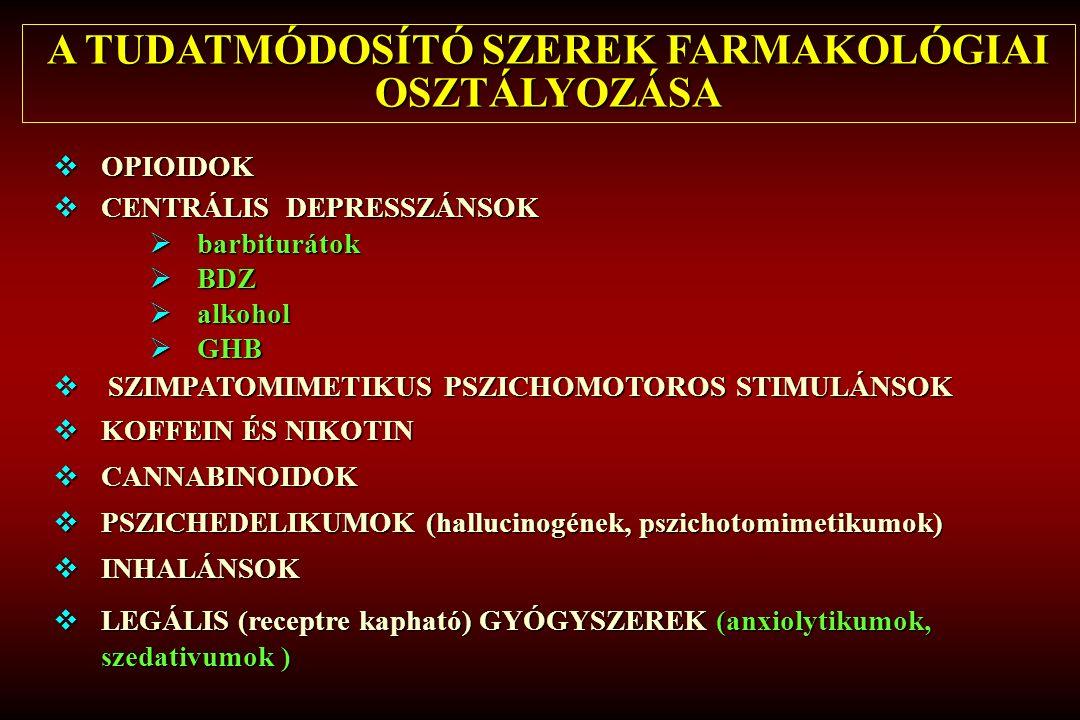 (Hibell és társai 2009:92) Csehország Szlovákia Man Sziget Magyarország Ausztria Málta Finnország Lettország Horvátország Egyesült Királyság Svédország Oroszország Írország Németország Svájc Franciaország Faröer Szigetek Lengyelország Litvánia Észtország Szlovénia Románia Norvégia Hollandia Olaszország Izland Belgium Portugália Görögország Ciprus Bulgária Ukrajna 0 2 4 6 8 10 12 14 16 18 20 GYÓGYSZER ALKOHOLLAL EGYÜTT TÖRTÉNŐ FOGYASZTÁSÁNAK ÉLETPREVALENCIA ÉRTÉKEI EURÓPÁBAN 2007 életprevalencia életprevalencia európaiátlag európai átlag
