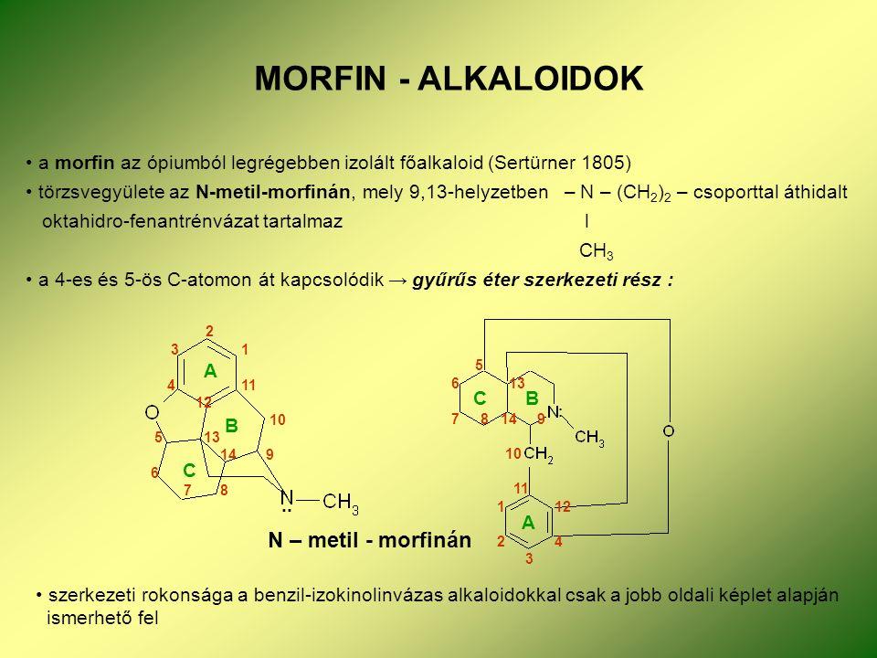 MORFIN - ALKALOIDOK a morfin az ópiumból legrégebben izolált főalkaloid (Sertürner 1805) törzsvegyülete az N-metil-morfinán, mely 9,13-helyzetben – N – (CH 2 ) 2 – csoporttal áthidalt oktahidro-fenantrénvázat tartalmaz l CH 3 a 4-es és 5-ös C-atomon át kapcsolódik → gyűrűs éter szerkezeti rész : N – metil - morfinán 2 3 1 4 11 12 10 5 13 14 9 6 7 8 A B C C B A :..