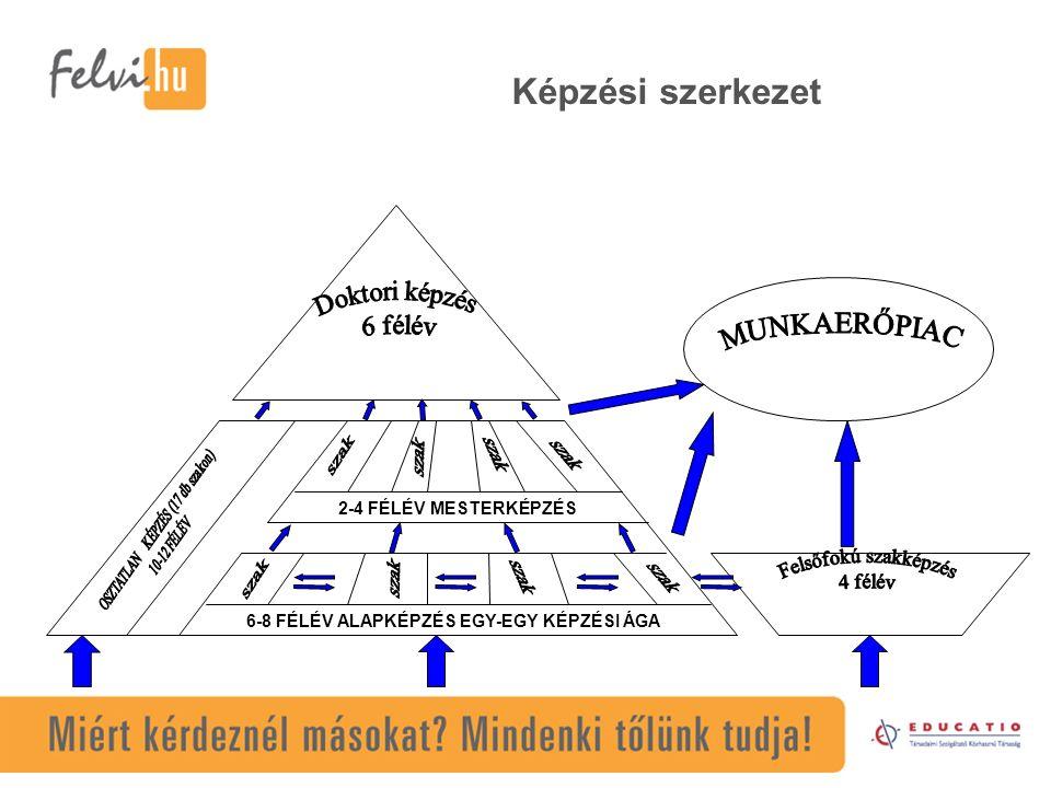 6-8 FÉLÉV ALAPKÉPZÉS EGY-EGY KÉPZÉSI ÁGA 2-4 FÉLÉV MESTERKÉPZÉS Képzési szerkezet