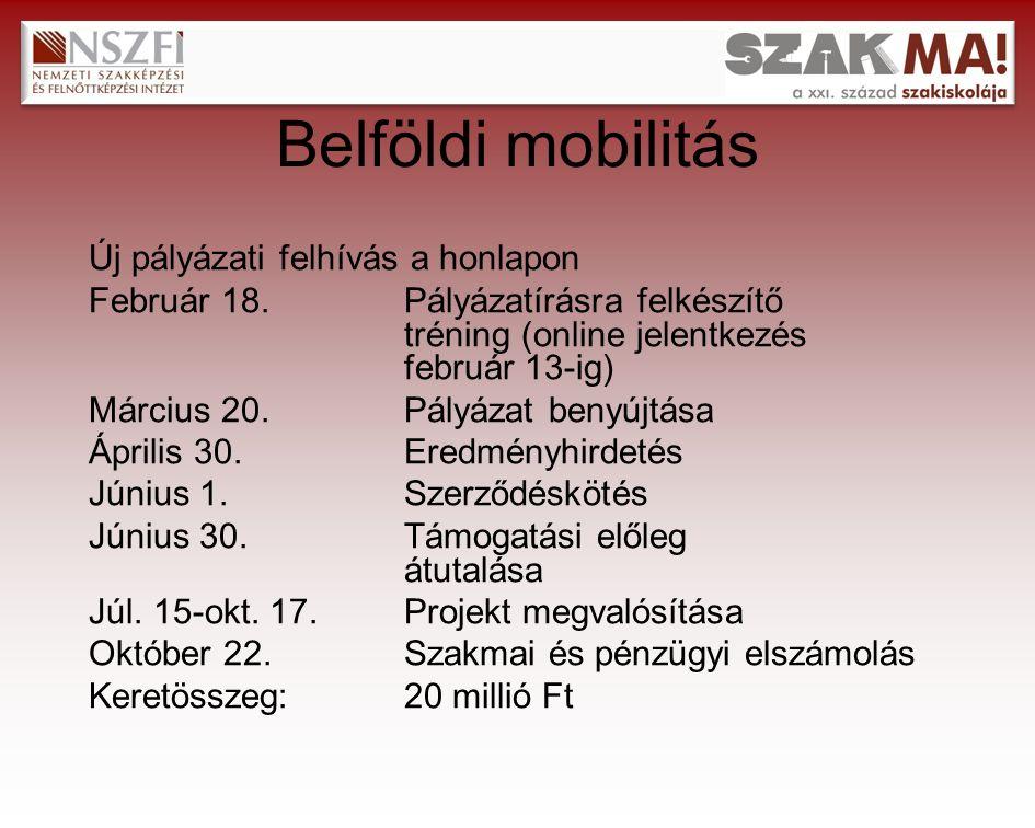Belföldi mobilitás Új pályázati felhívás a honlapon Február 18.