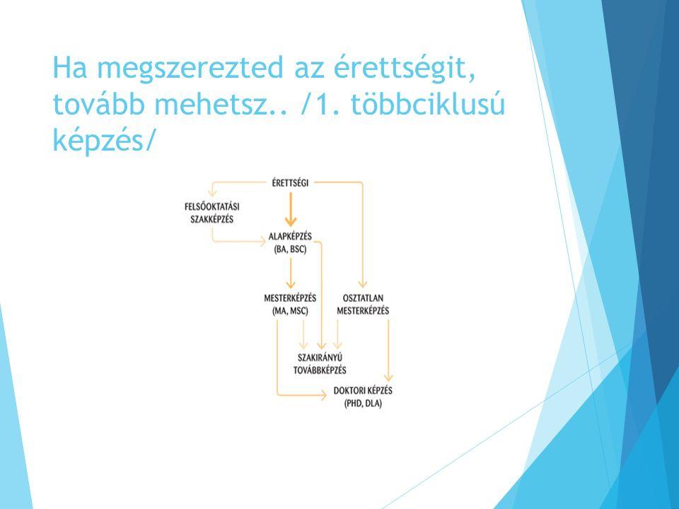 Hasznos oldalak, linkek  www.felvi.hu www.felvi.hu  Minden ami felsőoktatás: szakleírások, felvételi fórumok, rangsorok, felvételi segítség  www.fisz.hu www.fisz.hu  Felvételi információs szolgálat, hírek és felkészítés  http://bkf.hu/tovabbtanulasikisokos/ http://bkf.hu/tovabbtanulasikisokos/  Letölthető segítség: tippek, trükkök és tanácsok felvételizni készülőknek