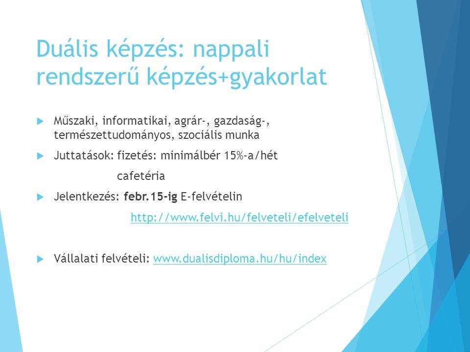 Duális képzés: nappali rendszerű képzés+gyakorlat  Műszaki, informatikai, agrár-, gazdaság-, természettudományos, szociális munka  Juttatások: fizetés: minimálbér 15%-a/hét cafetéria  Jelentkezés: febr.15-ig E-felvételin http://www.felvi.hu/felveteli/efelveteli  Vállalati felvételi: www.dualisdiploma.hu/hu/indexwww.dualisdiploma.hu/hu/index