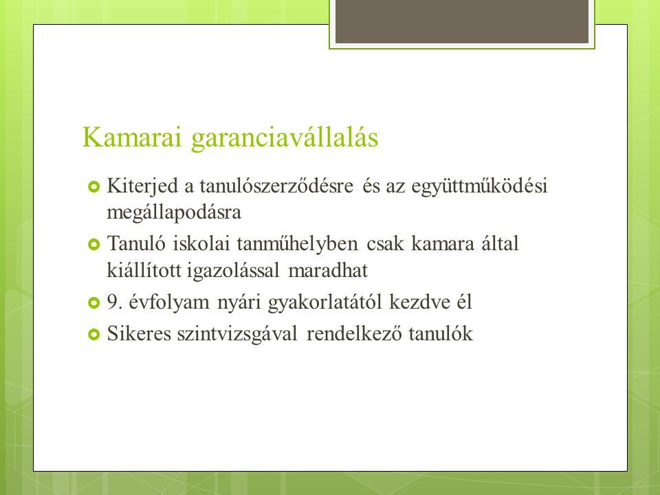 Kamarai garanciavállalás  Kiterjed a tanulószerződésre és az együttműködési megállapodásra  Tanuló iskolai tanműhelyben csak kamara által kiállított