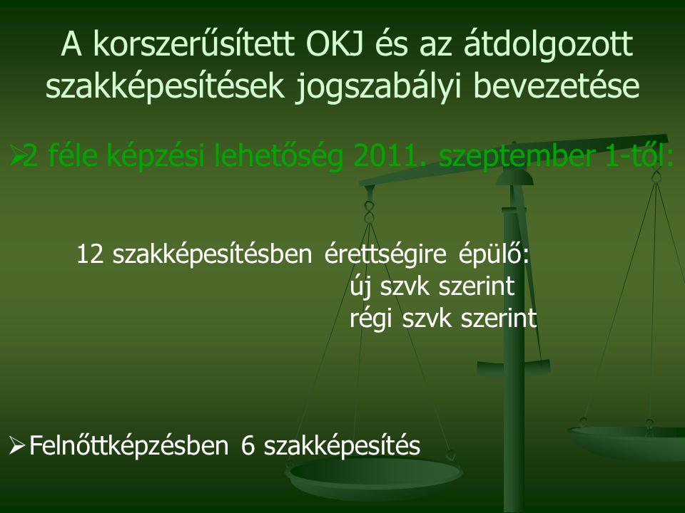 A korszerűsített OKJ és az átdolgozott szakképesítések jogszabályi bevezetése  2 féle képzési lehetőség 2011.