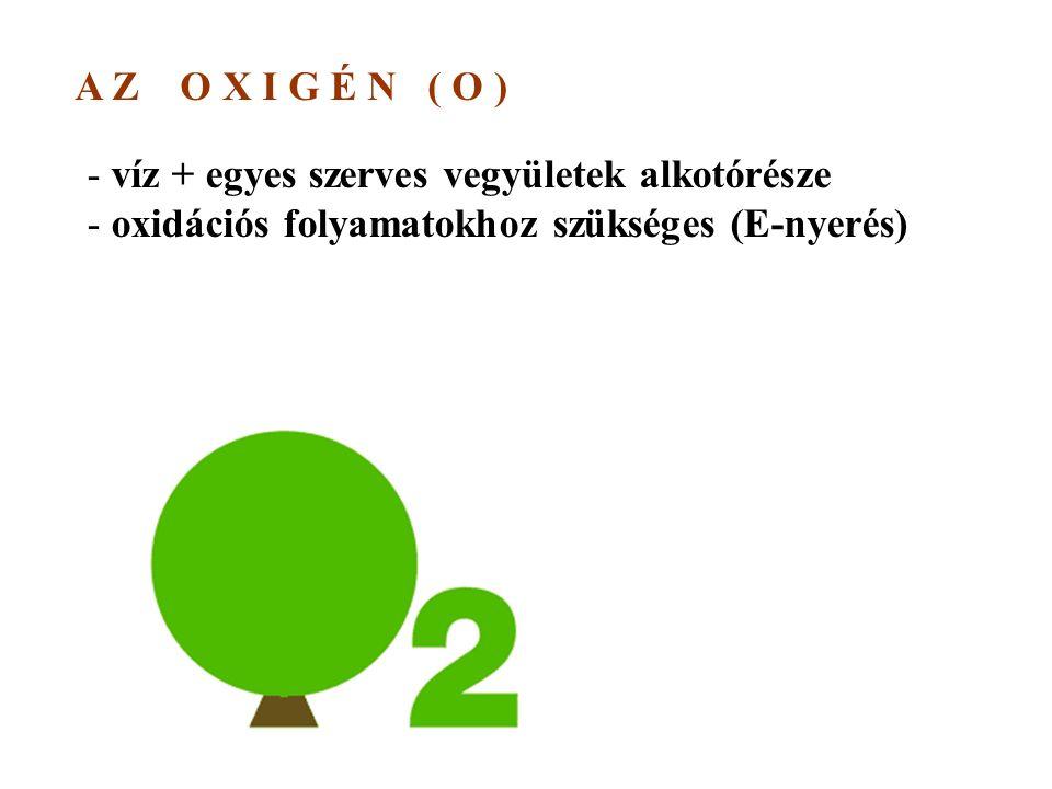 A Z O X I G É N ( O ) - víz + egyes szerves vegyületek alkotórésze - oxidációs folyamatokhoz szükséges (E-nyerés)