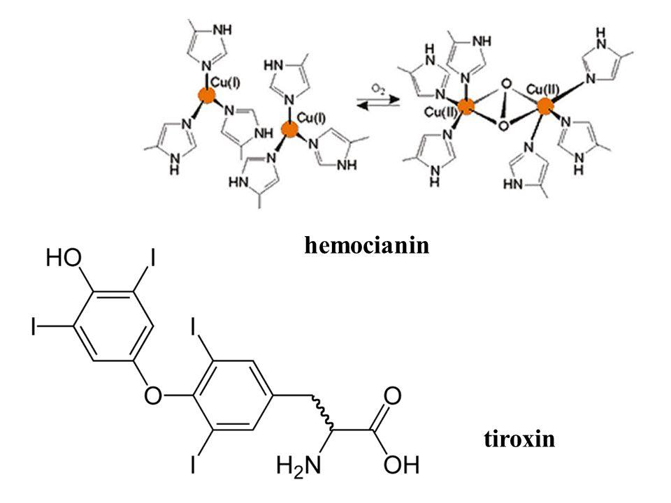 hemocianin tiroxin