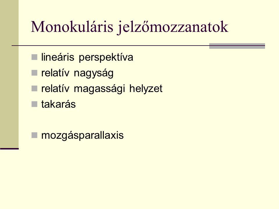 Monokuláris jelzőmozzanatok lineáris perspektíva relatív nagyság relatív magassági helyzet takarás mozgásparallaxis
