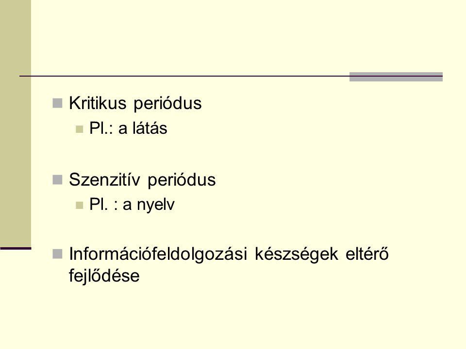 Mintafelismerés Téri lokalizáció Perceptuális konstanciák