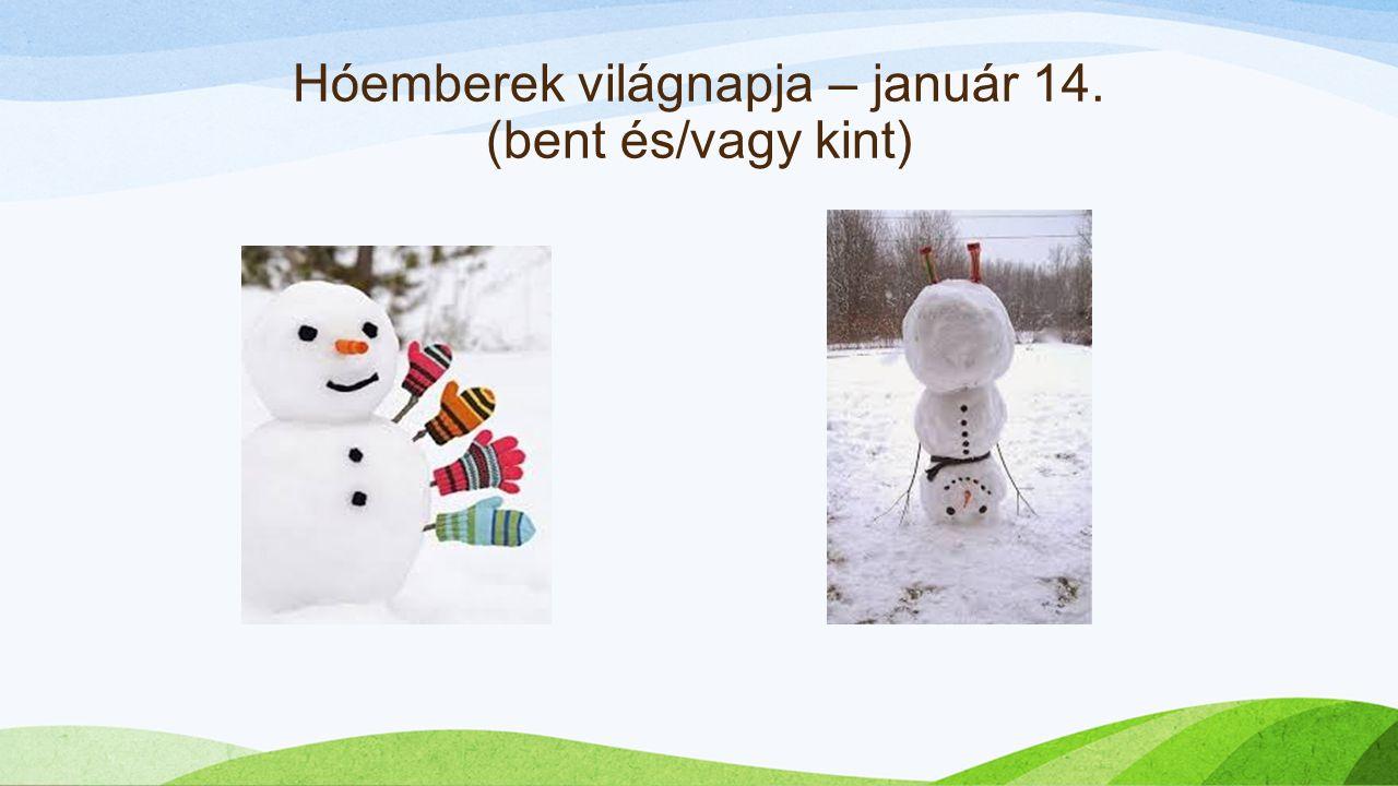 Hóemberek világnapja – január 14. (bent és/vagy kint)