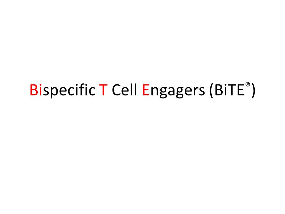 Bispecific T Cell Engagers (BiTE ® )