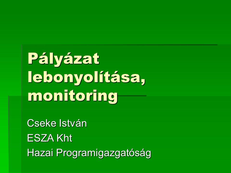 Pályázat lebonyolítása, monitoring Cseke István ESZA Kht Hazai Programigazgatóság
