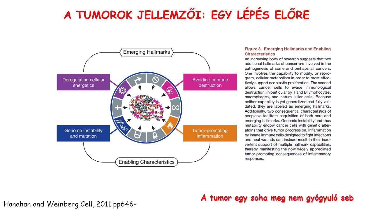 A tumor egy soha meg nem gyógyuló seb Hanahan and Weinberg Cell, 2011 pp646- A TUMOROK JELLEMZŐI: EGY LÉPÉS ELŐRE