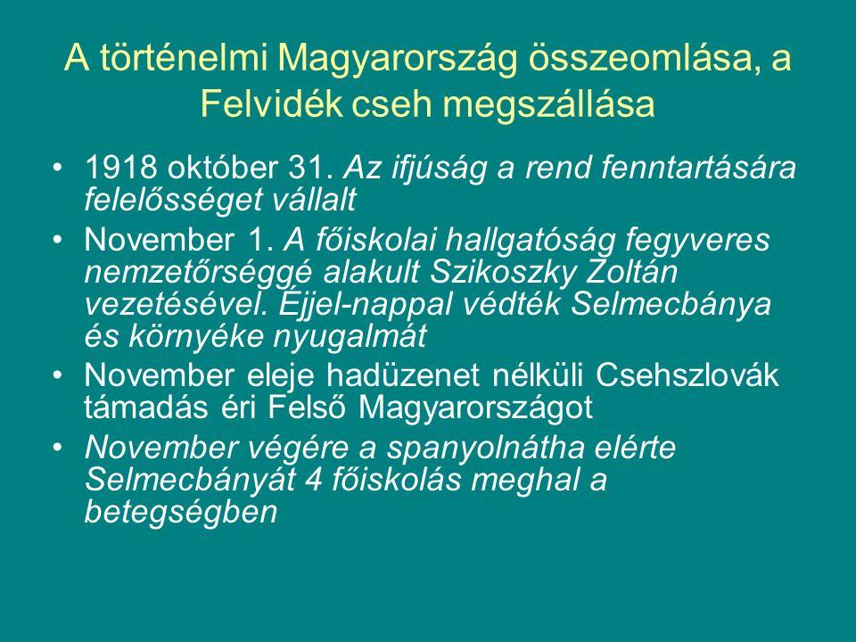 A történelmi Magyarország összeomlása, a Felvidék cseh megszállása 1918 október 31.