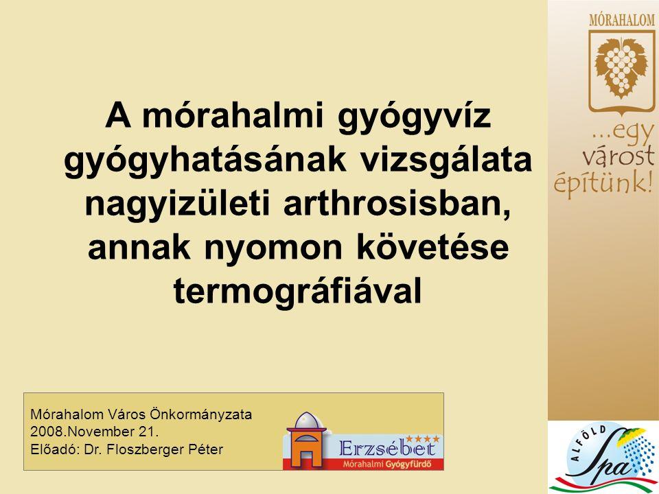 Mórahalom Város Önkormányzata 2008.November 21. Előadó: Dr.