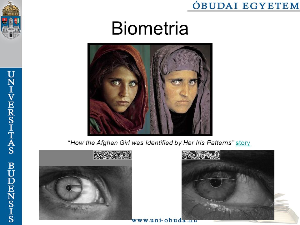 Biometria How the Afghan Girl was Identified by Her Iris Patterns storystory