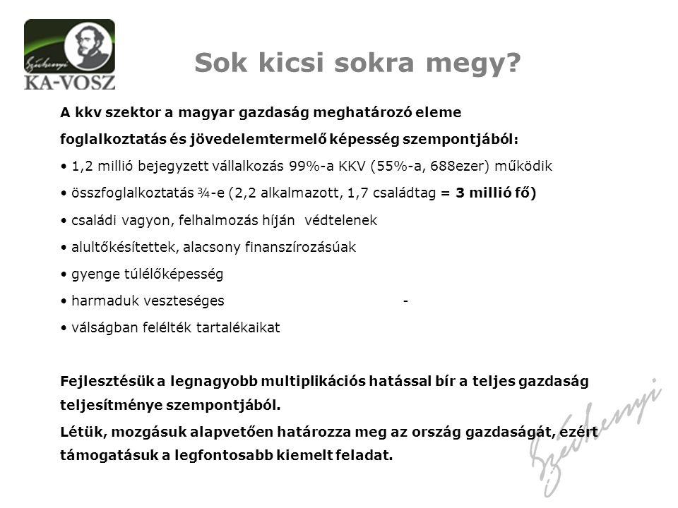 A kkv szektor a magyar gazdaság meghatározó eleme foglalkoztatás és jövedelemtermelő képesség szempontjából: 1,2 millió bejegyzett vállalkozás 99%-a KKV (55%-a, 688ezer) működik összfoglalkoztatás ¾-e (2,2 alkalmazott, 1,7 családtag = 3 millió fő) családi vagyon, felhalmozás híján védtelenek alultőkésítettek, alacsony finanszírozásúak gyenge túlélőképesség harmaduk veszteséges - válságban felélték tartalékaikat Fejlesztésük a legnagyobb multiplikációs hatással bír a teljes gazdaság teljesítménye szempontjából.