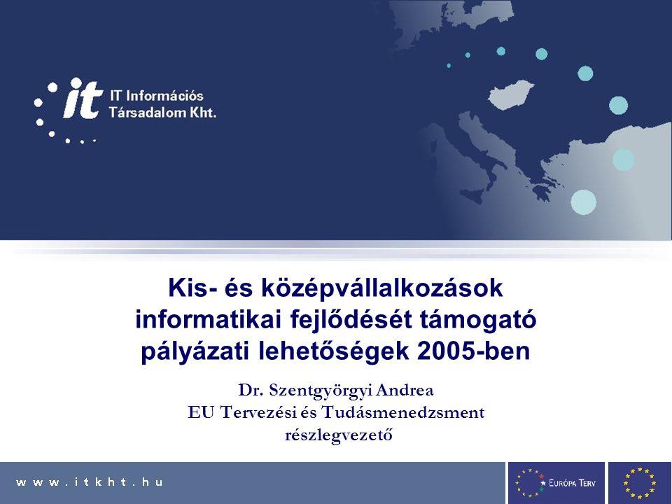 Kis- és középvállalkozások informatikai fejlődését támogató pályázati lehetőségek 2005-ben Dr.
