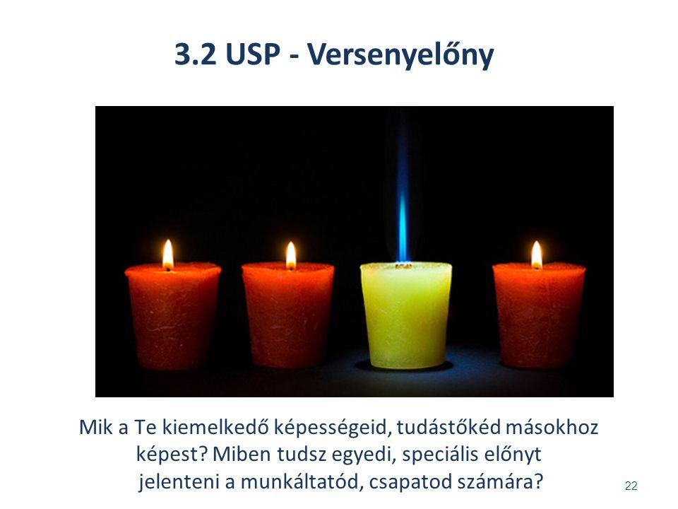 3.2 USP - Versenyelőny 22 Mik a Te kiemelkedő képességeid, tudástőkéd másokhoz képest.