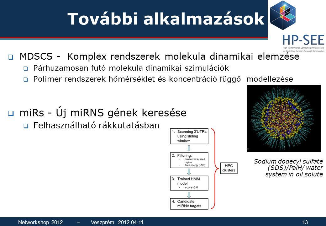 További alkalmazások  MDSCS - Komplex rendszerek molekula dinamikai elemzése  Párhuzamosan futó molekula dinamikai szimulációk  Polimer rendszerek hőmérséklet és koncentráció függő modellezése  miRs - Új miRNS gének keresése  Felhasználható rákkutatásban Sodium dodecyl sulfate (SDS)/PalH/ water system in oil solute Networkshop 2012 – Veszprém 2012.04.11.13